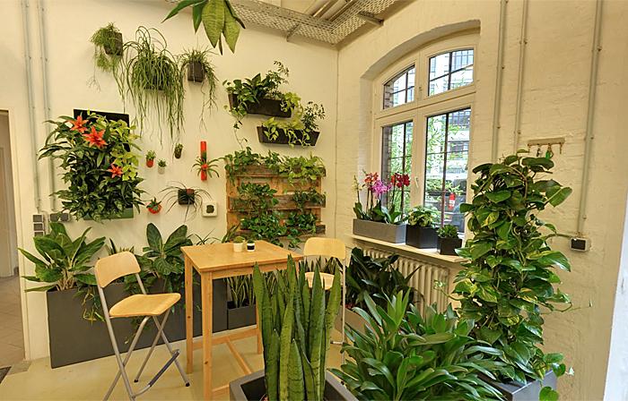 Akzente pflanzen design berlinf r bfb berlin felix for Akzente design